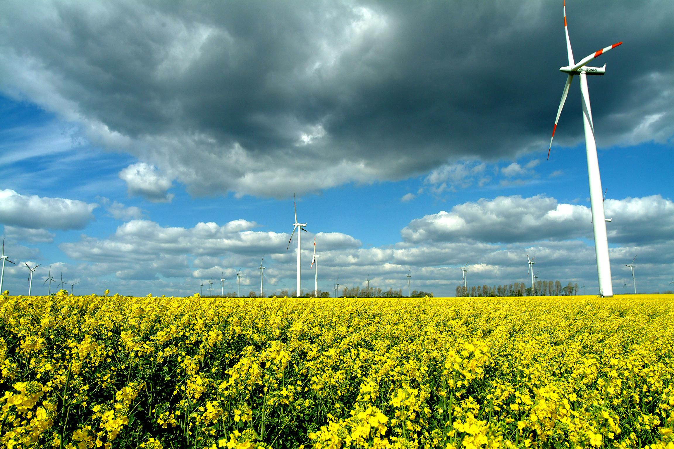 Juntos reducimos las emisiones contaminantes