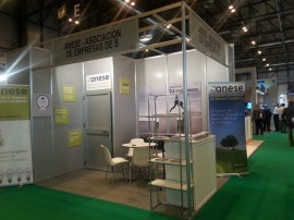 stand web