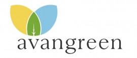 Avangreenjpg2