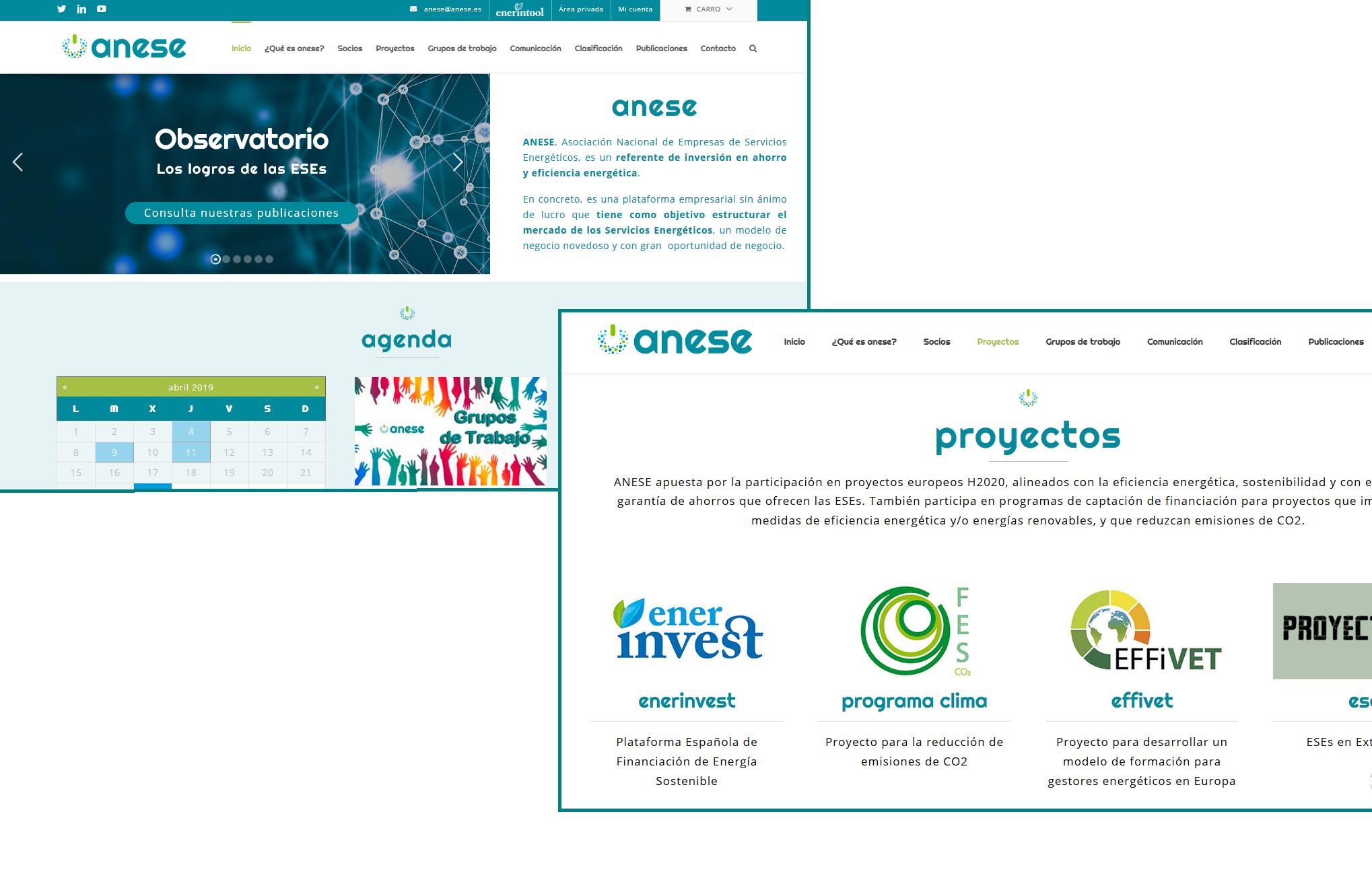 ANESE nueva web