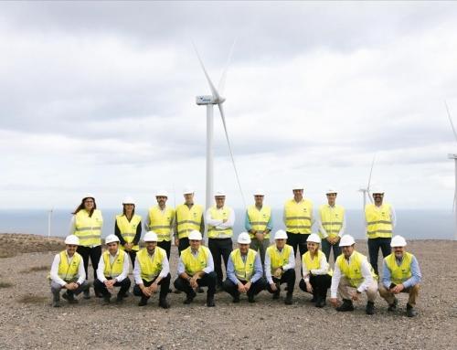Con la electricidad 100% renovable de Disa, Cajasiete reduce sus emisiones de CO2 y ahorra