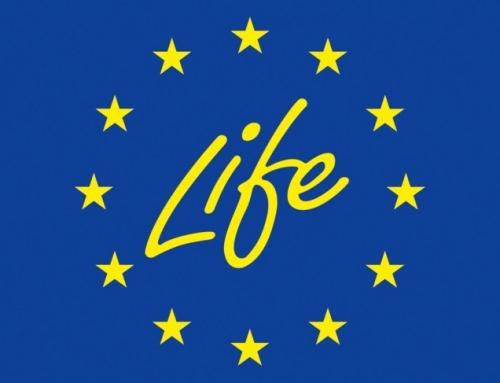 El Programa LIFE de la Unión Europea premia a Schneider Electric por su proyecto de desarrollo de capacidades sin gas SF6