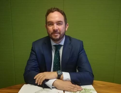 Luis Cabrera, director de energía y sostenibilidad de CBRE España, reelegido presidente de ANESE